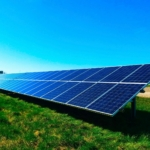 Solar Panels: Why are they trending and are they really cost-saving?